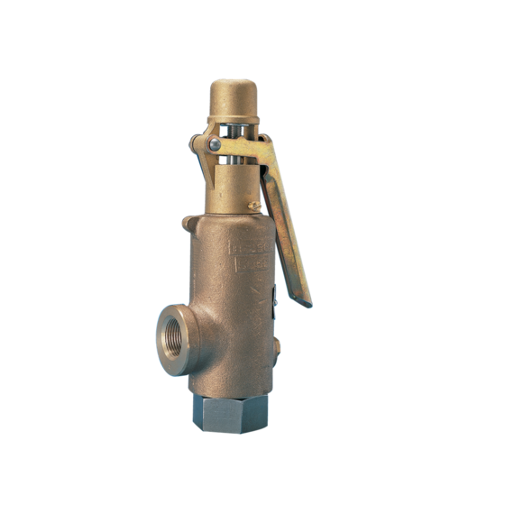 Models 189/363/389 Safety Relief Valves
