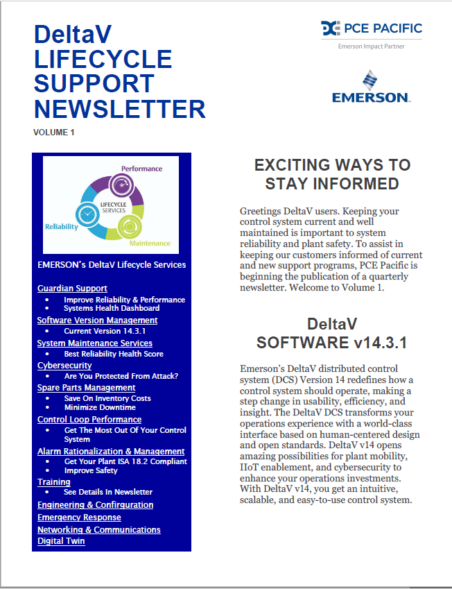 DeltaV LIFECYCLE SUPPORT NEWSLETTER Vol 1